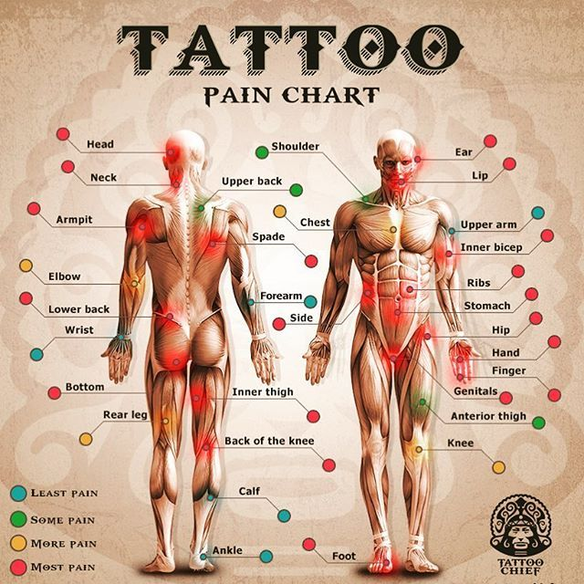 Small Simple Bull Tattoo Designs (117)